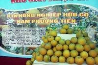 Nhiều sản phẩm nông nghiệp được cấp chứng nhận tiêu chuẩn VietGap