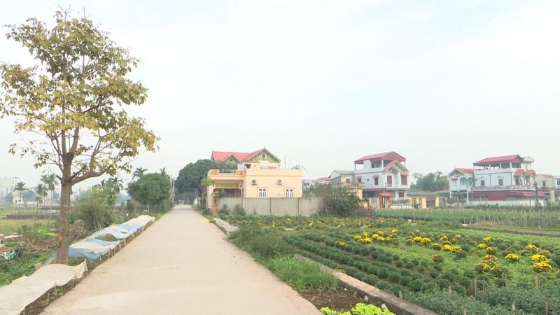Đời sống nhân dân Thường Tín được nâng cao sau 10 năm xây dựng nông thôn mới
