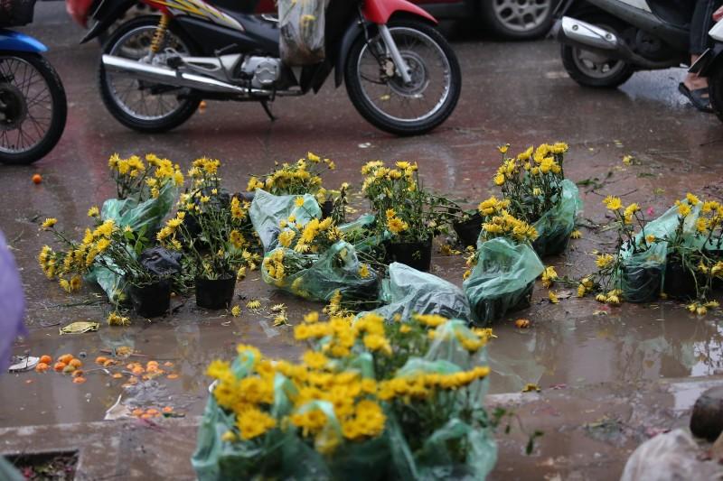 chieu 30 tet dao quat hoa e bi cat bo vut chong cho