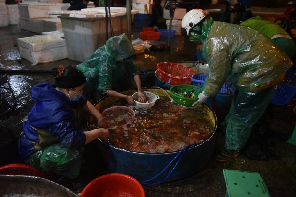 Chợ cá Yên Sở nhộn nhịp trước ngày 23 tháng Chạp