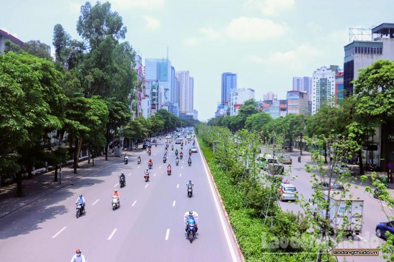 Bất chấp nắng nóng hàng phong lá đỏ vẫn xanh tươi giữa Thủ đô.