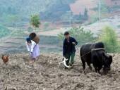 Lao động Việt Nam chăm chỉ: Sao vẫn chưa thoát nghèo?