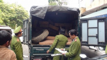 Bắt giữ 2 xe tải vận chuyển gỗ trái phép