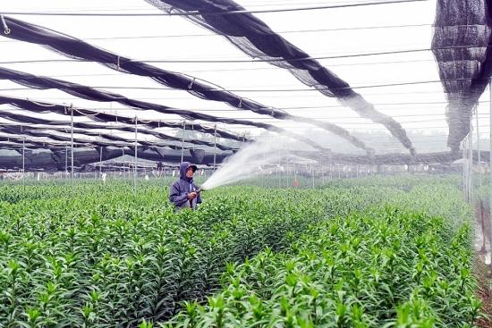 Xây dựng nông nghiệp thịnh vượng, nông thôn văn minh