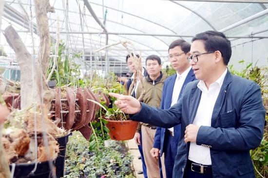 Gắn phát triển đô thị dịch vụ với nông nghiệp công nghệ cao