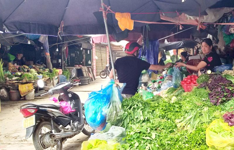 Đối phó với tình trạng rau xanh tăng giá, công nhân tự tăng gia sản xuất