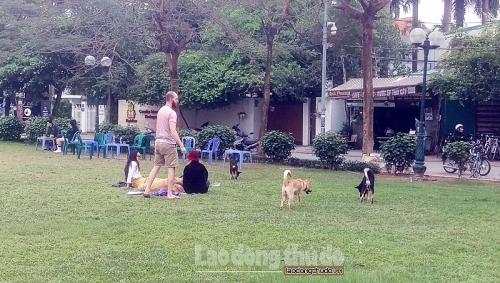 Nguy cơ chó không đeo rọ mõm chạy trong khu vui chơi của trẻ