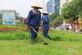 Phí duy trì cây cảnh, thảm cỏ tối đa 9.400 đồng/m2/tháng