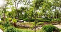 Thiên đường xanh Gamuda Gardens tung khuyến mãi khủng