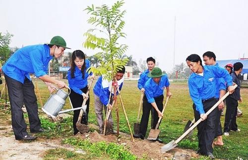 Hà Nội phấn đấu trồng trên 200.000 cây bóng mát, cây lấy gỗ