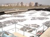 Hướng đi mới trong xử lý nước thải tại các làng nghề