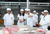 Bí thư Thành ủy Hà Nội thăm mô hình nông nghiệp công nghệ cao