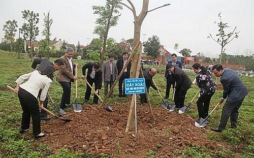 Hà Nội trồng mới được gần 82 nghìn cây xanh đô thị