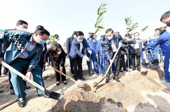 Hà Nội quyết tâm thực hiện chương trình trồng 1 tỷ cây xanh