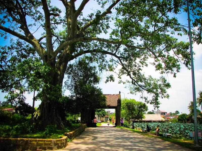 Tinh hoa của kiến trúc Việt