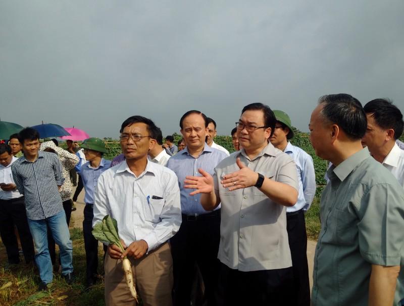 Bí thư Hoàng Trung Hải: Huyện Mê Linh cần tận dụng tốt lợi thế để phát triển