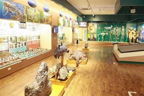 Hà Nội quy hoạch hơn 38ha để xây dựng bảo tàng thiên nhiên