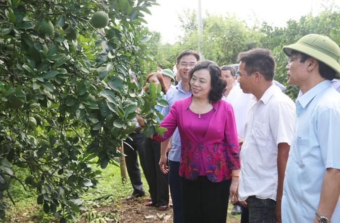 Tiếp tục xây dựng nông thôn mới gắn với phòng chống dịch bệnh
