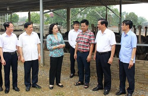 Lãnh đạo Thành ủy Hà Nội kiểm tra công tác xây dựng nông thôn mới tại huyện Ba Vì