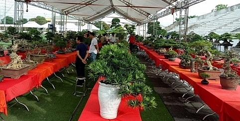 Hội chợ trưng bày 1.000 tác phẩm sinh vật cảnh mở cửa đón khách