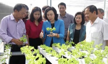 Huyện Thanh Trì: Xây dựng nông thôn mới phải gắn với phát triển đô thị văn minh