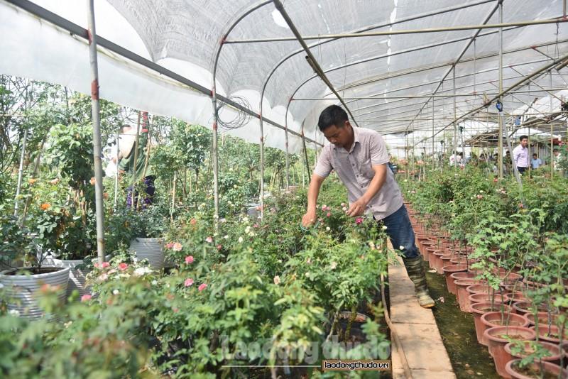 Nông dân với phong trào thi đua tham gia xây dựng nông thôn mới