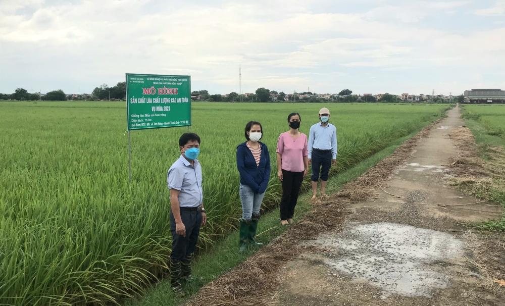 """Huyện Thanh Oai hỗ trợ tối đa cho """"vùng xanh"""" sản xuất, kinh doanh"""