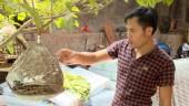 Kỹ sư trẻ kiếm tiền tỷ nhờ dạy chim hót