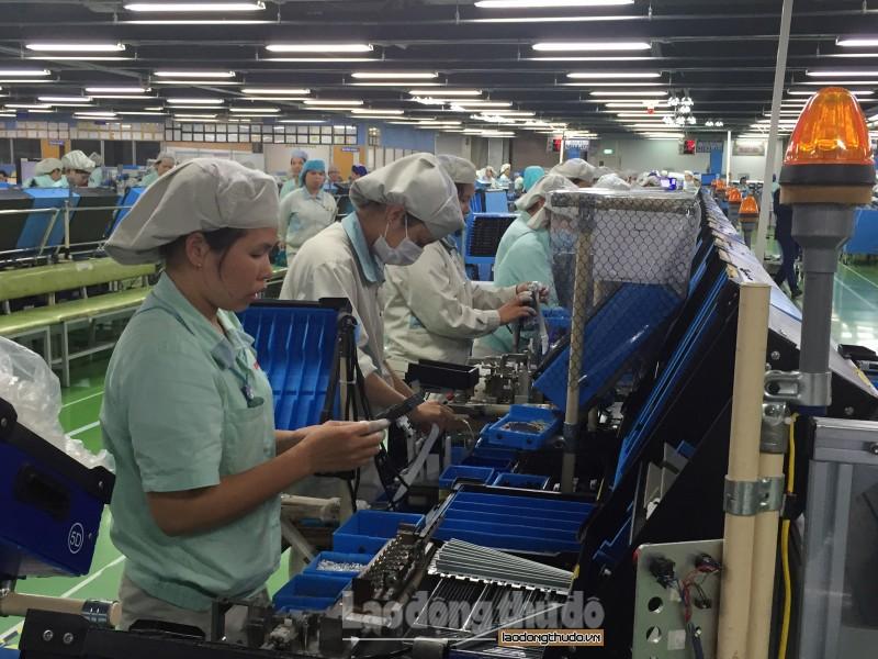 Lao động trong các doanh nghiệp công nghiệp tăng 11,3%