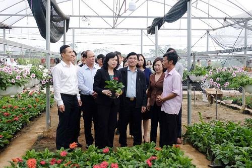 Huyện Phúc Thọ: Giữ vững và nâng cao chất lượng nông thôn mới ở 22 xã