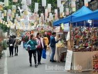 Đậm sắc không gian Tết truyền thống trên phố Phùng Hưng