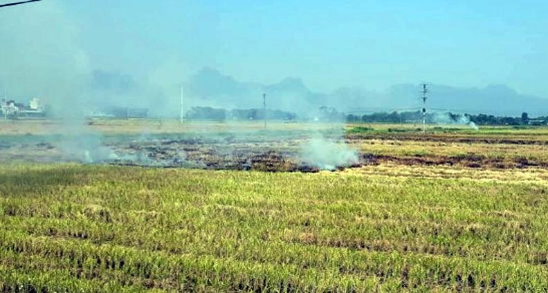 Tỷ lệ đốt rơm rạ sau thu hoạch ở Hà Nội giảm rõ rệt
