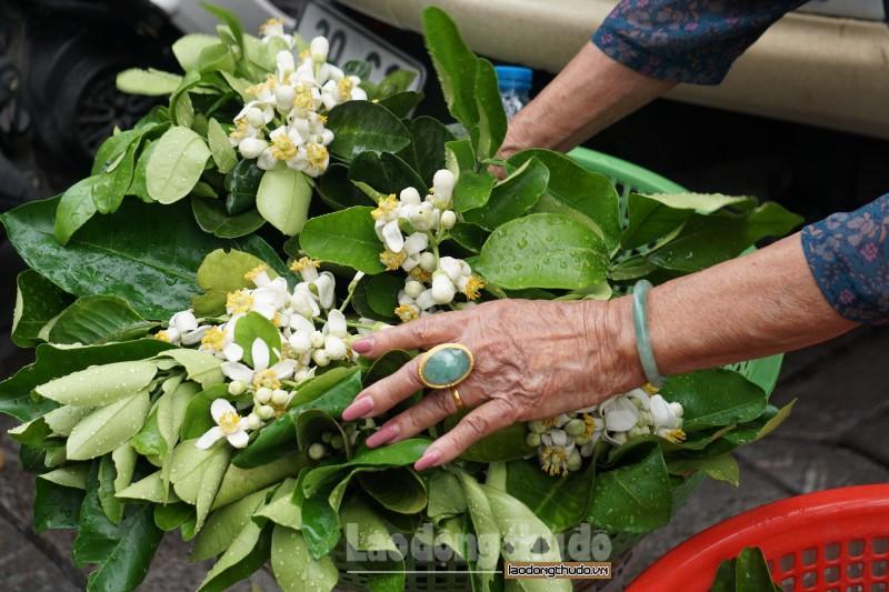 ha noi ngat huong buoi ben nhung ganh hang hoa