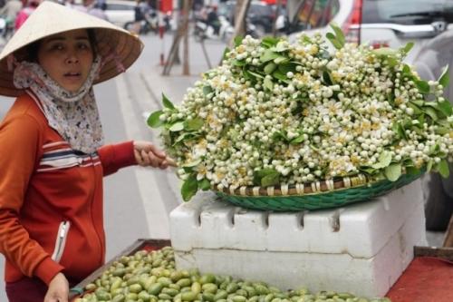 Hà Nội ngát hương bưởi bên những gánh hàng hoa