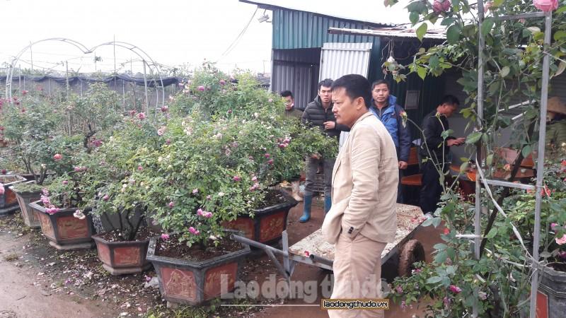 Ứng dụng khoa học công nghệ để thúc đẩy phát triển nông nghiệp Thủ đô