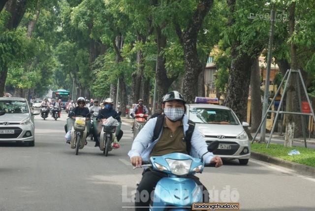 Những tuyến phố ai cũng muốn ghé qua trong những ngày Hà Nội nắng đỉnh điểm