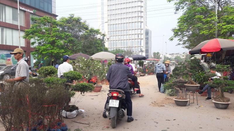 tung bung huong sac xuan tren cho hoa van phuc