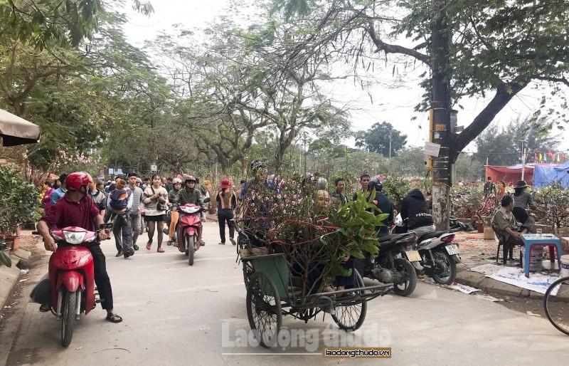 Nam Định: Nhộn nhịp chợ hoa ngày giáp Tết