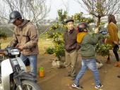 Nhộp nhịp chợ hoa Thái Bình ngày giáp Tết
