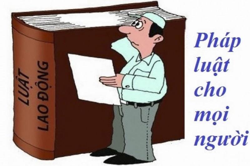 Thực hiện hiệu quả chính sách, pháp luật về lao động trong các doanh nghiệp
