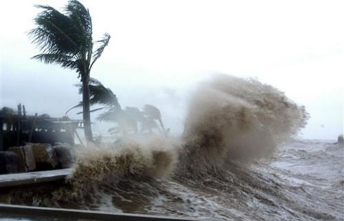 Yêu cầu Ban chỉ đạo thi THPT 2019 các tỉnh chủ động ứng phó cơn bão số 2