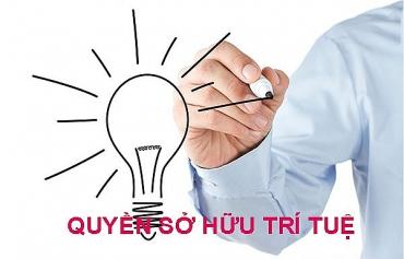 Triển khai hoạt động sở hữu trí tuệ trong các cơ sở giáo dục đại học