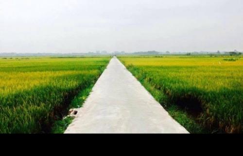 Đẩy nhanh giải quyết nợ đọng xây dựng cơ bản của các dự án nông thôn mới