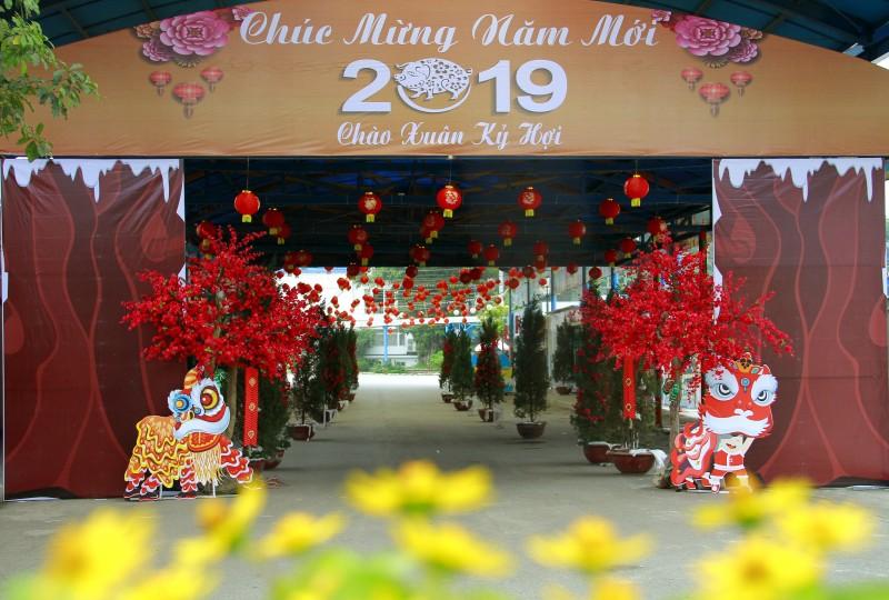 hap dan chao xuan ky hoi 2019 tai cong vien ho tay