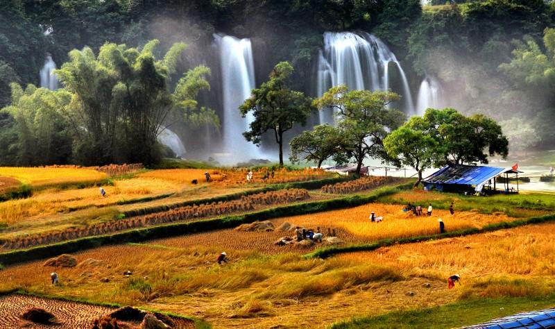 Triển lãm 'Khám phá Việt Nam'