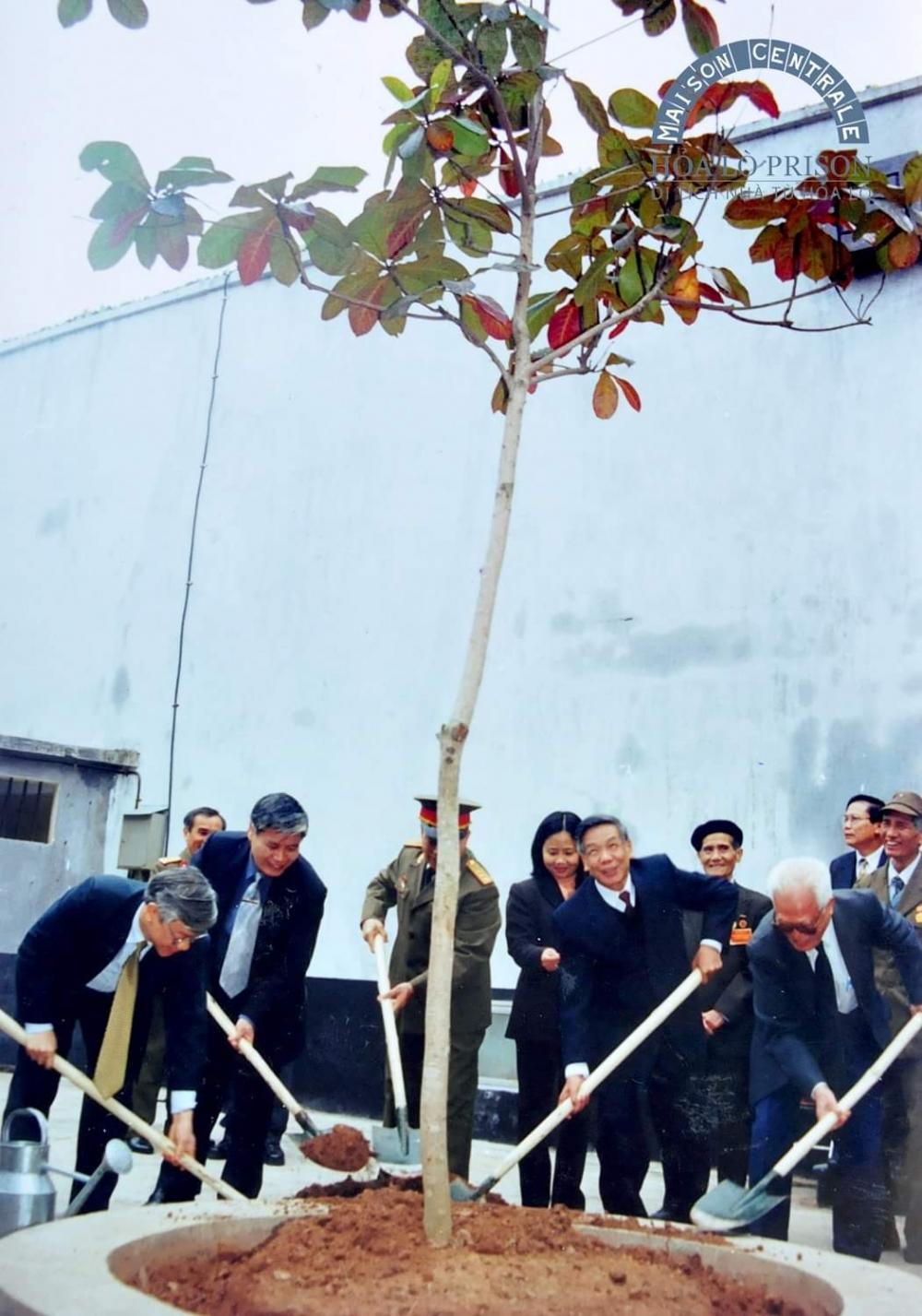 Chuyện về cây bàng nghĩa tình do nguyên Tổng Bí thư Lê Khả Phiêu trồng tại Di tích Nhà tù Hoả Lò