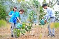 """Phát động Tết trồng cây """"Đời đời nhớ ơn Bác Hồ"""""""