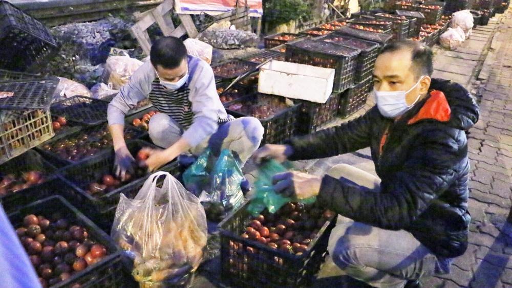 Ấm lòng người Hà Nội giải cứu nông sản cho nông dân Hải Dương từ tờ mờ sáng