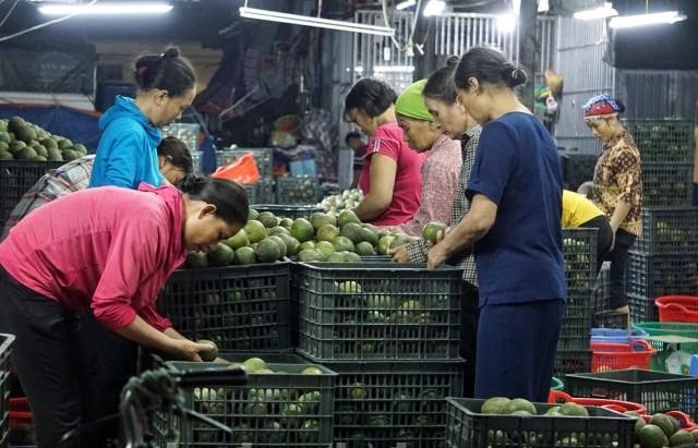 Chú trọng đảm bảo an toàn thực phẩm tại chợ đầu mối nông sản