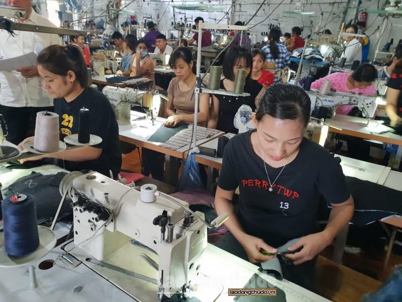 Sơn Tây: Tích cực đào tạo nghề cho lao động nông thôn